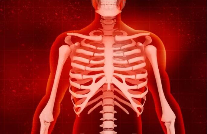 bienfaits-de-la-musculation-système-osseux