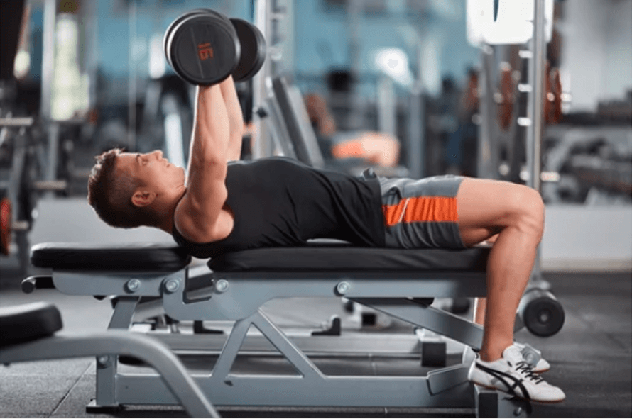 exercices-banc-musculation-pectoraux